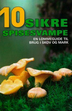 10 sikre spisesvampe (Bog)