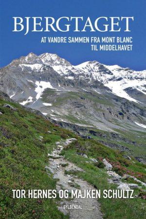 Bjergtaget (E-bog)