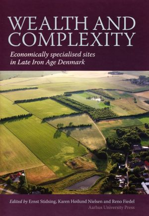 Wealth And Complexity - Ernst Stidsing - Bog