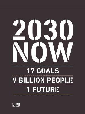 2030 Now - Susanne Sayers - Bog